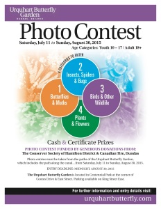 Photo Contest Poster Letter