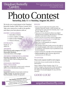 Photo Contest rules Letter