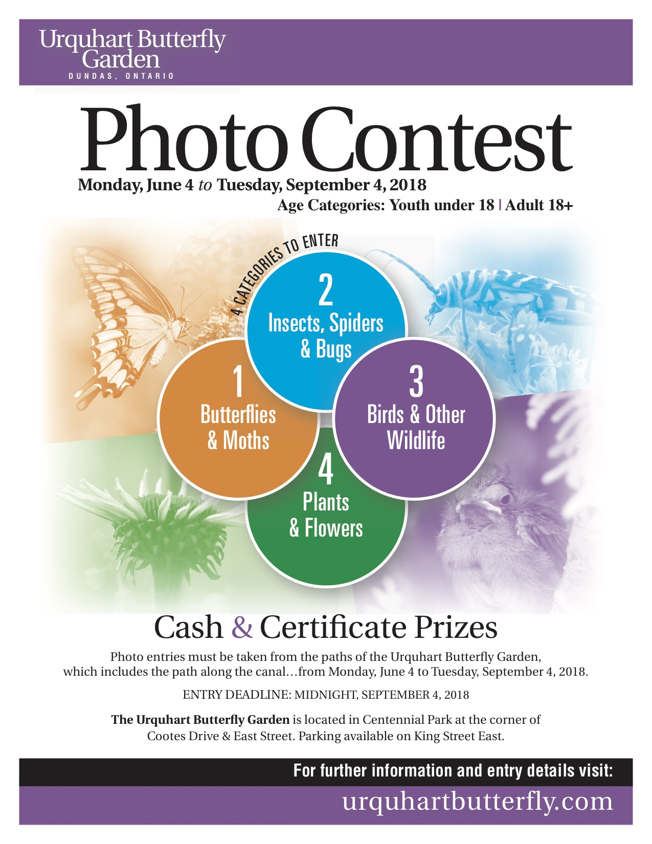 Photo Contest 2018!