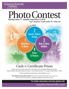 Photo Contest Poster Letter_2018
